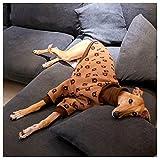 Abrigo italiano de galgo, suéter de invierno para perro chaqueta de invierno cálida con, suéter para mascotas, cachorro, camiseta para galgos, lurchers y Whippets