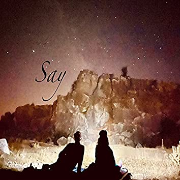 Say (Extended Version)