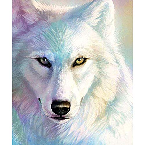 5D Full Round Drill Diamond Painting Kit Rhinestone Painting Kits for Adults and Beginner Embroidery Arts Craft Home Decor White Wolf Head 11.8x15.7in 1 Pack by Witfox