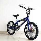 GASLIKE BMX BIKE-20 Pulgadas, Bicicleta BMX de acción de Truco, Adecuado para Principiantes a Nivel avanzado Bicicletas de la Calle BMX,B