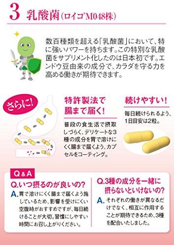 鉄壁ラクトフェリン:腸まで届く腸溶性サプリ20粒入(300mg×10日分)