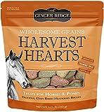 Ginger Ridge Horse Treats