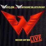Songtexte von Waylon Jennings - Never Say Die: Live