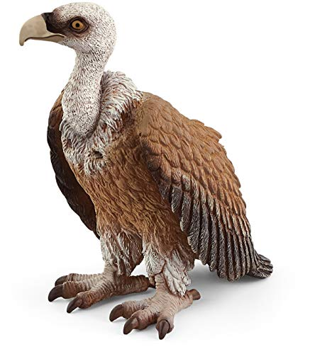 SCHLEICH Wild Life, Animal Figurine, Animal Toys for Boys and Girls 3-8 years old, Vulture