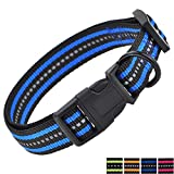 Mile High Life Night Reflective Double Bands Nylon Dog Collar (Blue, Medium Neck 13'-17' -40 lb)