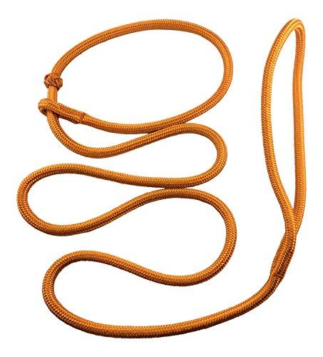 Dogs and More - PatchArt-Leine (Orange) - Leine und Halsband in EINEM; Retrieverleine in Sieben Farben