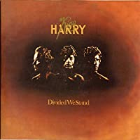 Divided We Stand: Limited by King Harry