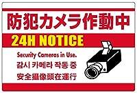 表示看板 「防犯カメラ作動中」 白地 英語/中国語/韓国語入り 反射加工なし 特大サイズ 90cm×135cm VH-199XL