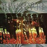 Songtexte von Trip Shakespeare - Applehead Man
