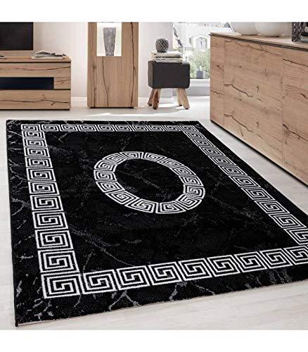 Teppich Modern Designer Bordüre Ornament Marmor Optik Schwarz Weiß - 160x230 cm