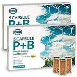2x Kontak Propoli + Boswellia Capsule Per Diffusori Ambientali, 5 capsule Propolair - Pacchetto contenete 2 confezioni da 5 capsule | Difese Immunitarie, respirazione