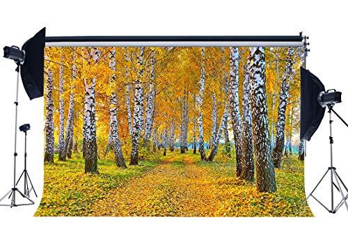 BuEnn Ländlicher Herbst-Hintergrund 5X3FT-Vinyl-Birken-Wald-Baum-Hintergründe-Landschafts-Fallende goldene Blätter Natur-Tourismus-Fotografie-Hintergrund Erntedankfest-Tapeten-Studio-Stütze YX849