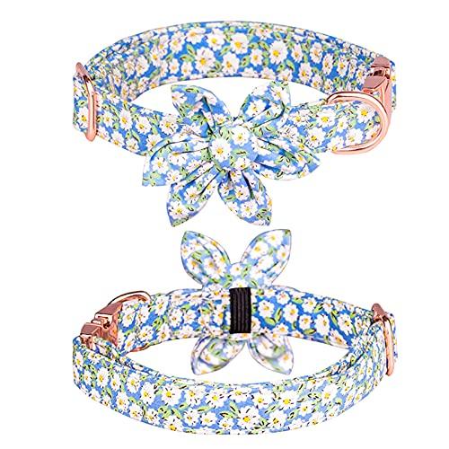 FUNAT Collare per Cani e Gatti Sunflower, Collare a Fiore di Gatto, Collare per Cani con Fibbia in Oro Rosa, Collare per Animali Regolabile