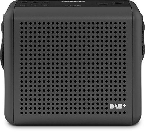 Nordmende Transita 110 – Tragbares DAB+ und UKW Digitalradio – Portable Musikbox mit OLED-Bildschirm – Outdoor Radio mit Tragegriff und Uhr