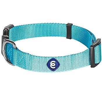 x small dog collar