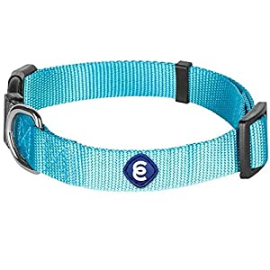 Blueberry Pet Essentials 22 Colors Classic Dog Collar, Turquoise, Small, Neck 12″-16″, Nylon Collars for Dogs