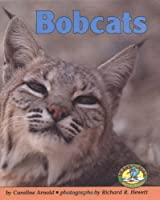 Bobcats (Early Bird Nature Books) 082253021X Book Cover