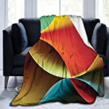 """Papalikz Ultra-Soft Micro Fleece Soft and Warm Throw Blanket, Abstract, Graphic Curved Origami Design with Colored Details Work of Art,80"""" 60"""", Orange Blue White and Red"""
