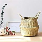 ZYTB Pot de Fleurs de Paille Pliable Suspendu en rotin Panier de Fleurs à la Main en Osier Cache-Pot Planteur Moderne Flowerpot décoratifs for la Maison (Color : 04 XL)