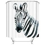 Fangkun Duschvorhang, Zebra-Skizze, Kunst-Dekor für Badezimmer – gestreiftes Tier-Themen-Druck-Badvorhang-Set – 12 Duschhaken – 183 x 183 cm