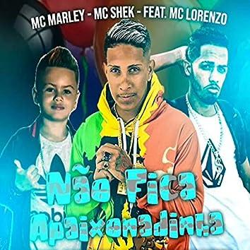 Não Fica Apaixonadinha (feat. MC Lorenzo) (Brega Funk)