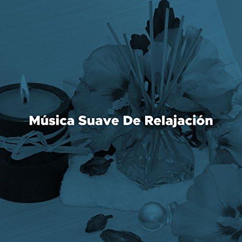 Canciones de Amor & Musica Para Estudiar Academy, Meditation Spa and Deep Sleep & Thanksgiving Music Specialists