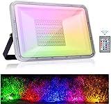 Tycolit Luces de inundación RGB de 100W luces de...