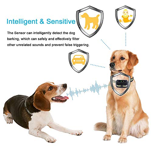 [Newest 2019]Dog Bark Collar-5 Adjustable Sensitivity and Intensity Levels-Dual Anti-Barking Modes-Rechargeable/Rainproof/Reflective -No Barking Control Dog shock Collar for Small Medium Large Dog
