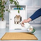 Geruchsneutralisierer Spray für Katzen – natürlicher Katzenurin Entferner – gegen Katzenklo Geruch - 5
