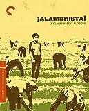 Criterion Collection: Alambrista [Edizione: Stati Uniti] [Reino Unido] [Blu-ray]