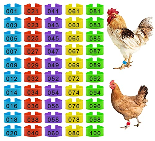 100 Pieces Chicken Bird Leg Rings, Multiple Colour Numbered Chicken Birds Identification Leg Bands Poultry Leg Bands Clip-on Leg Rings for Pigeons Quail Chicken Goose Gamefowl Turkey