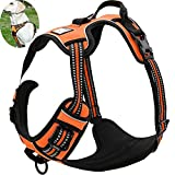 OLizee New No Pull Dog Harness Outdoor Adventure Reflective Markings Pet Vest with Handle Adjustable Protective Nylon Walking Pet Harness Variety of Sizes and Colors,Orange L