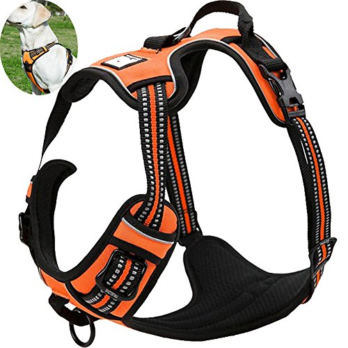 OLizee New No Pull Dog Harness Outdoor Adventure...