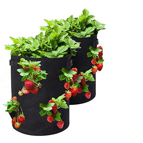 Tvird Borsa per Piante, 10Gallon Strawberry Plant...