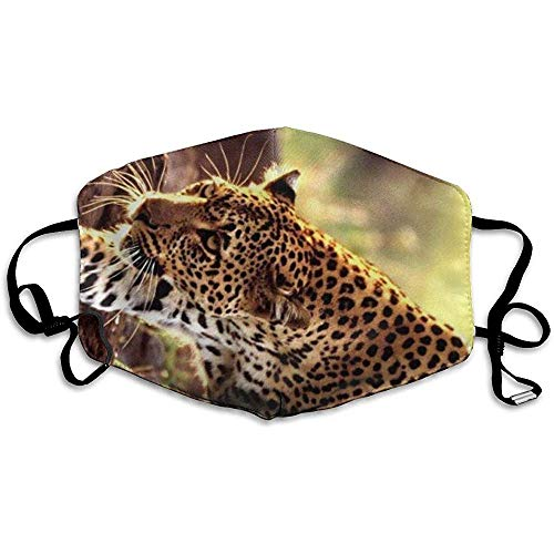 Wasbare Mond Maskers Anti-Stof Unisex Afrikaanse Luipaard Warm Gezicht Masker Koele Cover Filters Allergens