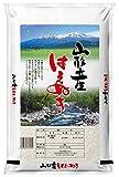★【精米】山形県 白米 はえぬき 5kg 令和元年産が1,779円!