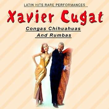Congas, Chihuahuas and Rumbas