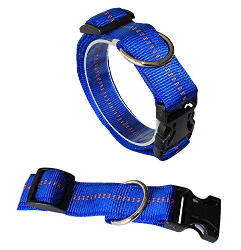 Koch G3304010 Nylon-Halsband gepolstert mit Klickverschluss stufenlos verstellbar, XL, royal