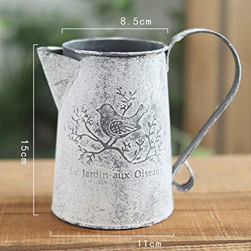 IJzeren vaas met vogel print oud milieuvriendelijk bureau-handwerk verzinkt shabby tuin vintage gieter vorm eenvoudig op te bergen huisdecoratie (hoog)