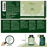 Zoom IMG-1 aminoacidi essenziali eaa vegavero 300