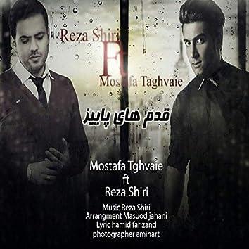 Ghadamhaye Paeiz