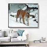 Pintura sin Marco Tigre Caminando en la Nieve Lienzo Arte Pintura Cartel Arte Moderno decoración del hogarZGQ2882 30X40cm