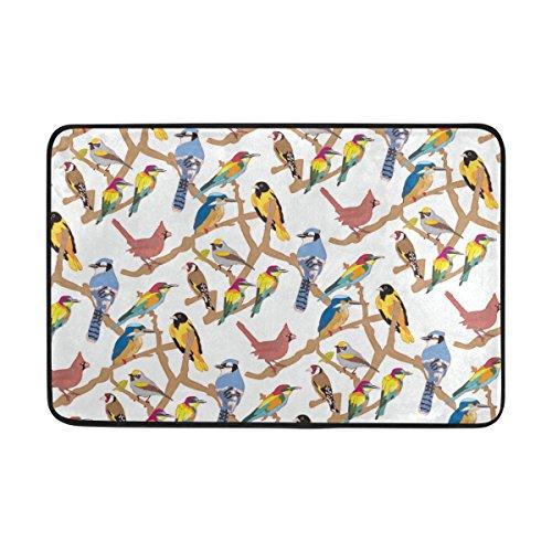 COOSUN Oiseaux Motif Paillasson, entrée manière de Porte Tapis Intérieur Extérieur avec Envers antidérapant, (23,6 par 39,9 cm)