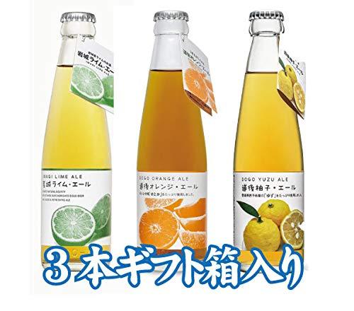 道後エール オレンジ・柚子・岩城ライムエール【3本飲み比べ】【プレゼント】【ギフト】
