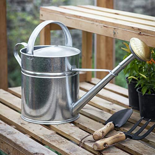 CKB LTD Regadera de 10 l de acero galvanizado para exteriores, con rosa de latón, para grandes jardines pequeños, flores y plantas, resistente, antioxidante (10 litros)