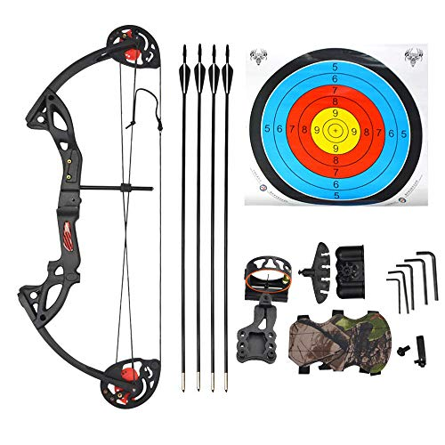 AMEYXGS Youth Compound Bow Set Beginner Archery with 4 Arrows Bow Sight and Arrow Rest 15-29lbs Children Compound Bow Outdoor Shooting Game Kids (Black)