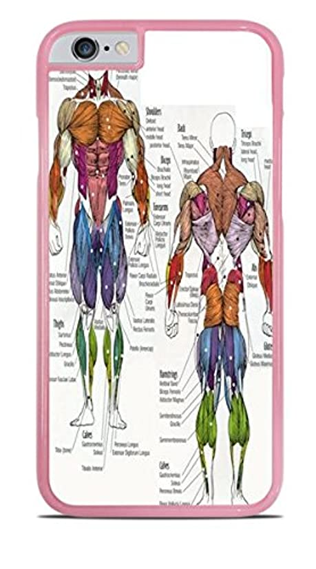 The Human Muscular System Pink Hardshell Case for iPhone 6 (4.7)