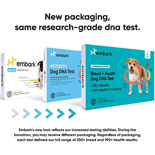 Embark | Dog DNA Test | Breed & Health Kit | Breed Identification & Canine Genetic Health Screening