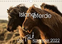 Islandpferde - Der Toelt Kalender (Wandkalender 2022 DIN A4 quer): Dieser Kalender ist speziell fuer Islandpferdeliebhaber gemacht und zeigt die Pferde in ihrer natuerlichen Umgebung. Zwoelf qualitativ hochwertige Fotografien. (Monatskalender, 14 Seiten )