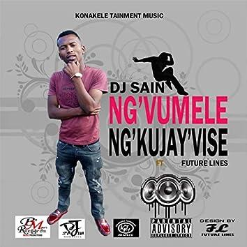 Ng'vumele Ng'kujayvise (feat. Future Lines)